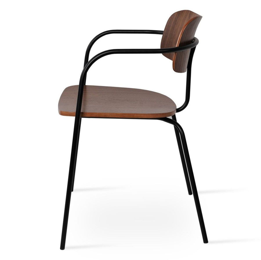 Picture of Academy Arm Dining Chair